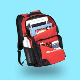 Manhattan Laptop Backpack